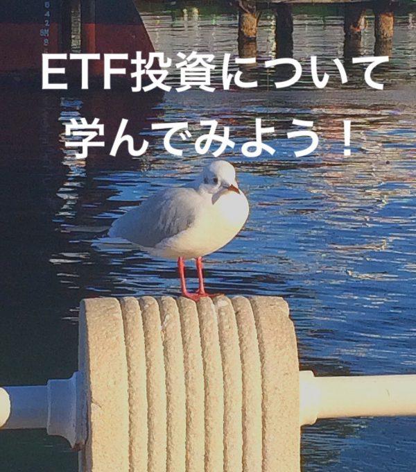 20代の資産運用!ETF商品は投資信託より運用コストが安い?