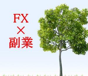 FXを「副業」として運用できるか考察!経済的自由のサポートに