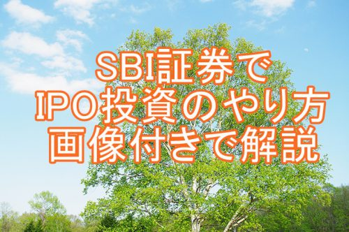 SBI証券でIPO投資、抽選方法のやり方を解説!