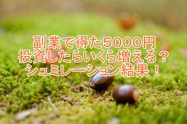 副業で得た5000円を投資したらどれくらい増える?シュミレーション結果